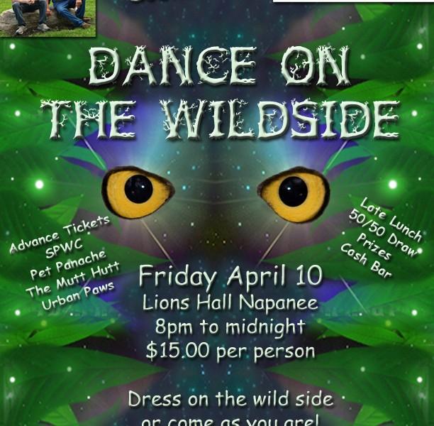 Dance on the Wildside GHO eyes