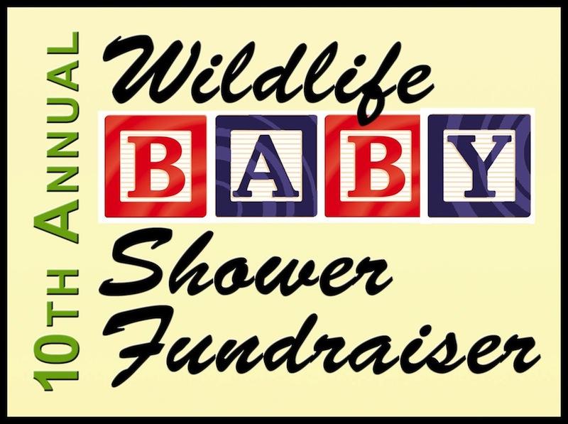 Baby Shower 2015 Logo
